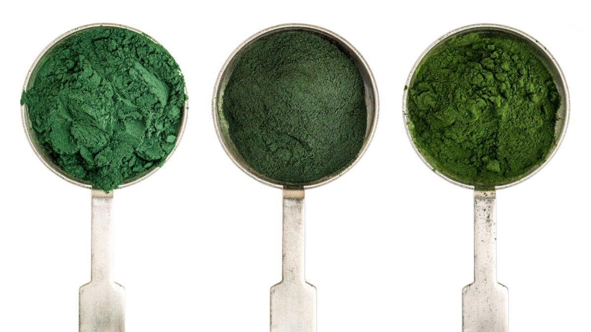 benefits of phytoplankton, spoons with phytoplankton green powder