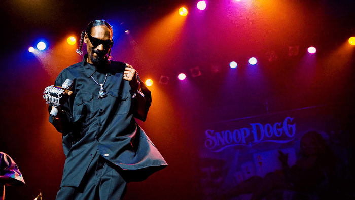 celebrities and weed, Snoop Dog on stage