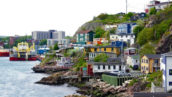 What to do in St. John's coastline