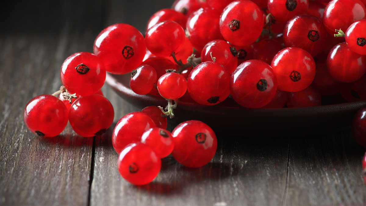 Berries, red currants
