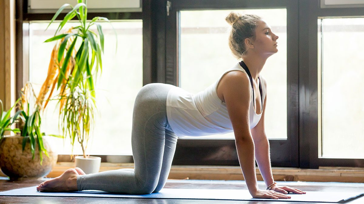Yoga For Digestion, cat/cow pose