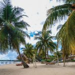 Belize Hopkins, beach photo