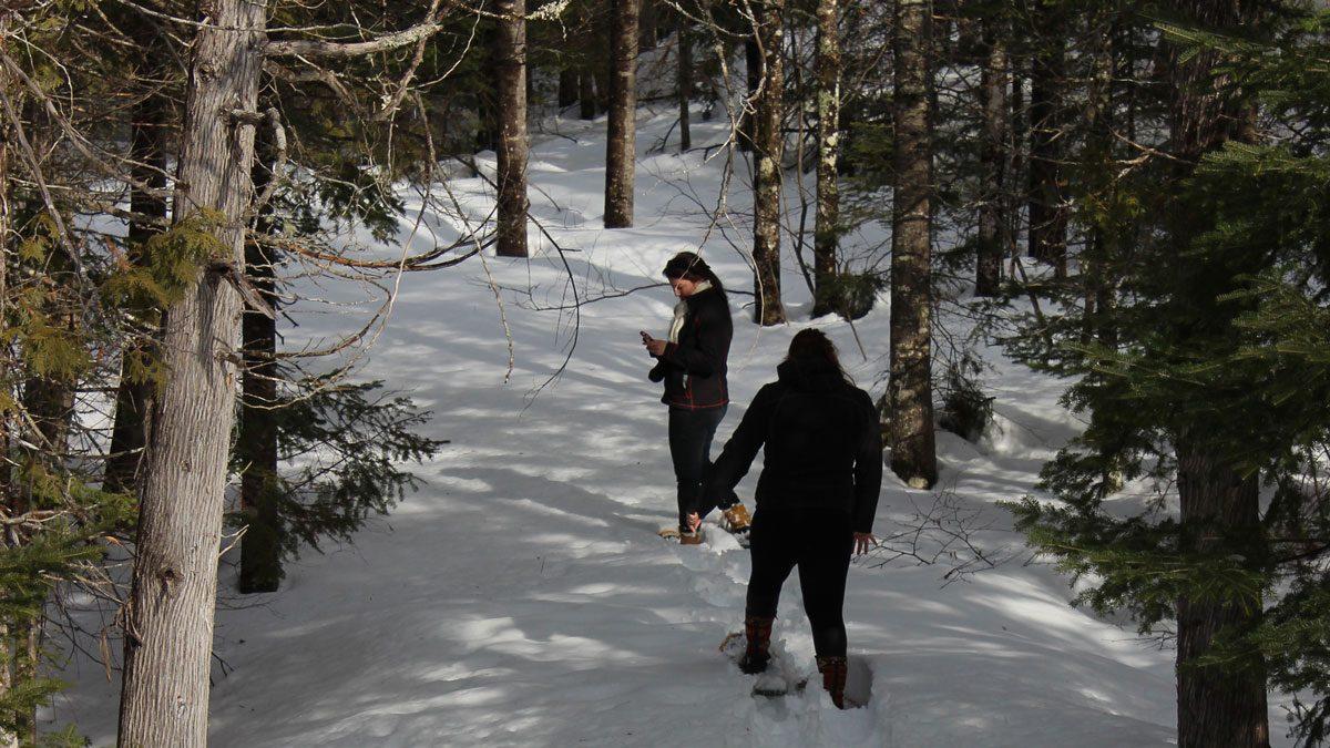 canadian winter-Metepenagiag-Heritage-Park-