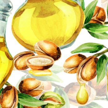 Everything You Need to Know About Using Argan Oil for Your Hair