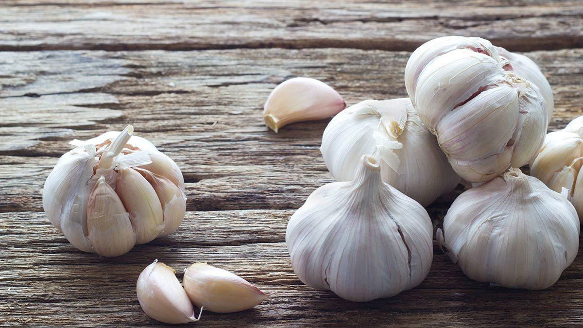 Stomach, garlic