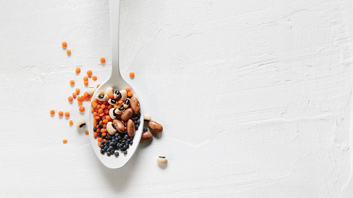 Pulses, lentils on a spoon