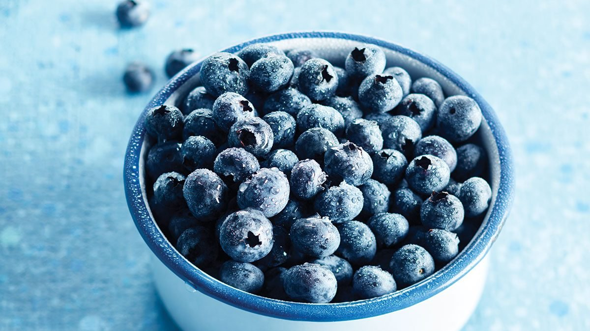 Useful properties and calorie content of blueberries