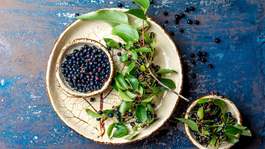 Maqui Berry the superfruit with more antioxidants than acai