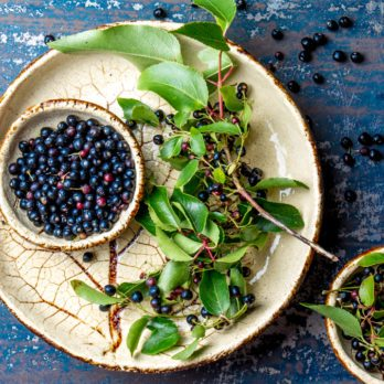 What is Maqui Berry? Everything You Need to Know About this Superfruit