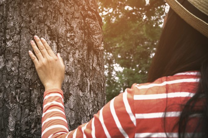 woman in the forest tree nature forest bathing
