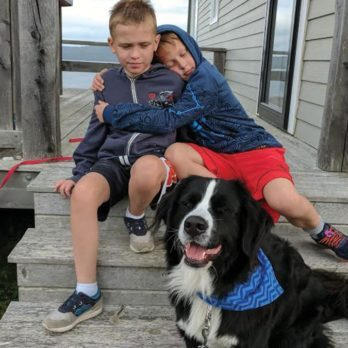 A Service Dog Changed This Little Boy's Life When Nothing Else Would Work