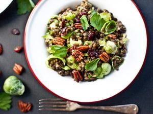 Lentil and Brussels Sprout Salad with Creamy Chia Dressing