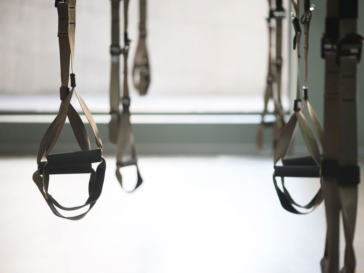 TRX Workout Ropes