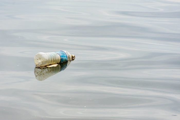 A horizontal, colored photo of a plastic bottled water floating on a river polluting the waters of Pasir Ris Beach in Singapore. Recycle to battle global warming