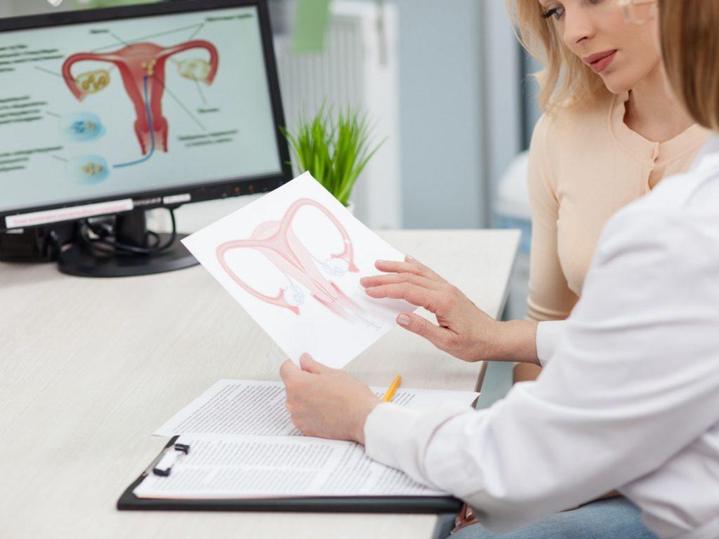 fertility doctor