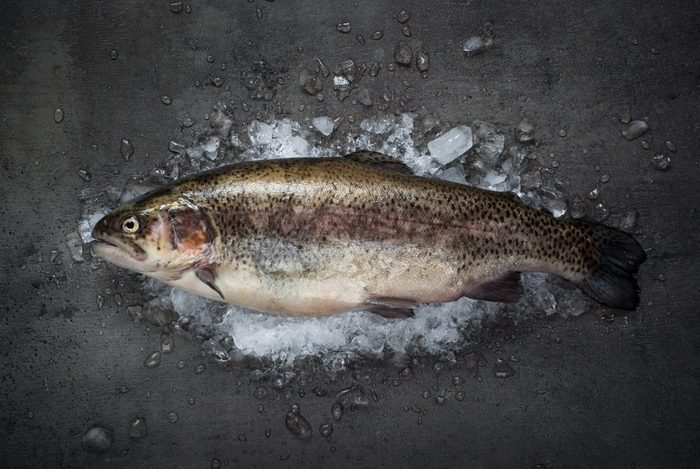 Raw brown trout on ice with sea salt, pepper and ingredients. Fresh fish. Top view, copy space. Food background.