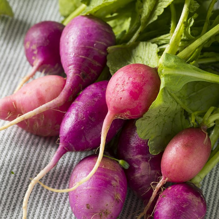 Raw Organic Pink and Purple Radishes in a Bunch