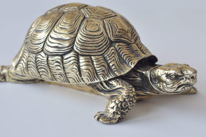 Gold feng-shui turtles