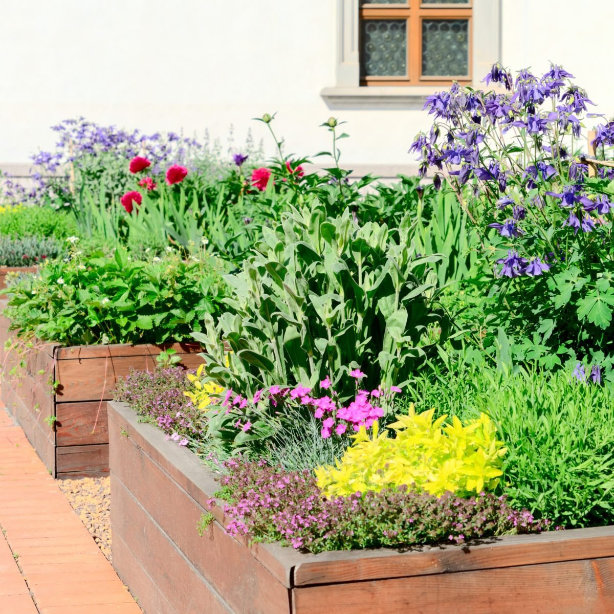 Edible Landscape Design: The Prettiest Edible Landscaping Ideas
