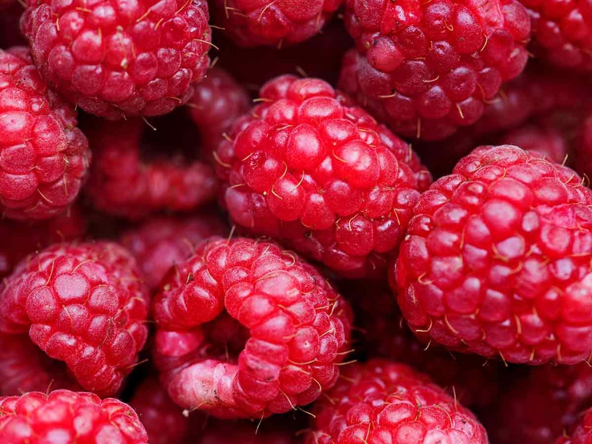in-season fruit