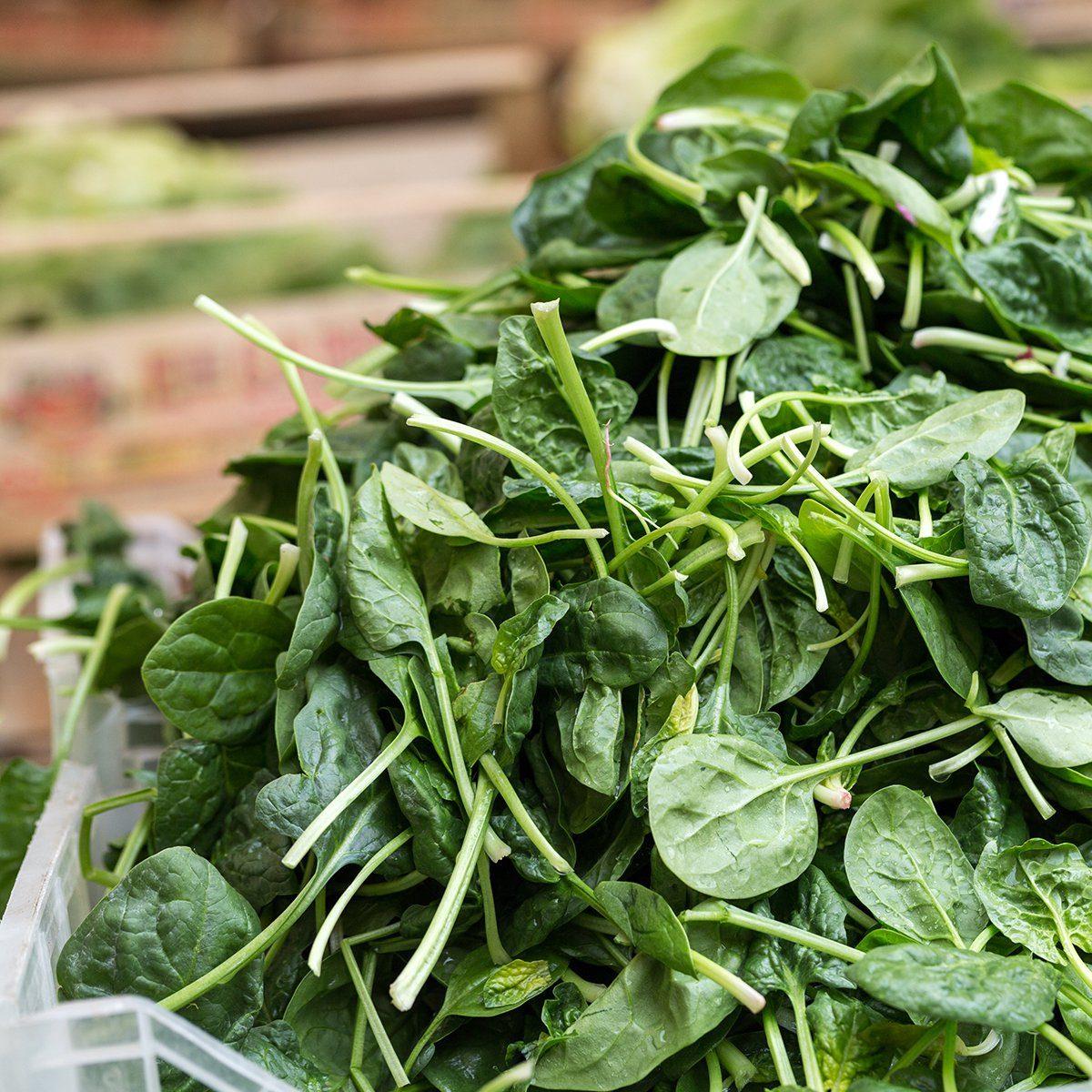 Fresh green Spinach at the farmers market; Shutterstock ID 438669850; Job (TFH, TOH, RD, BNB, CWM, CM): TOH