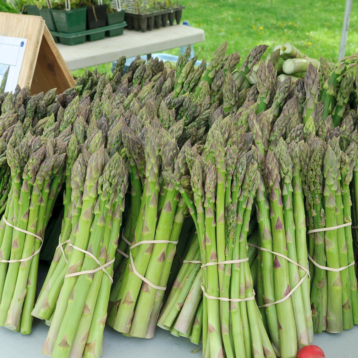 Organic asparagus for sale at farmers market; Shutterstock ID 78094342; Job (TFH, TOH, RD, BNB, CWM, CM): TOH