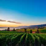 Osoyoos: A Beautiful BC Hotspot with Breathtaking Wineries