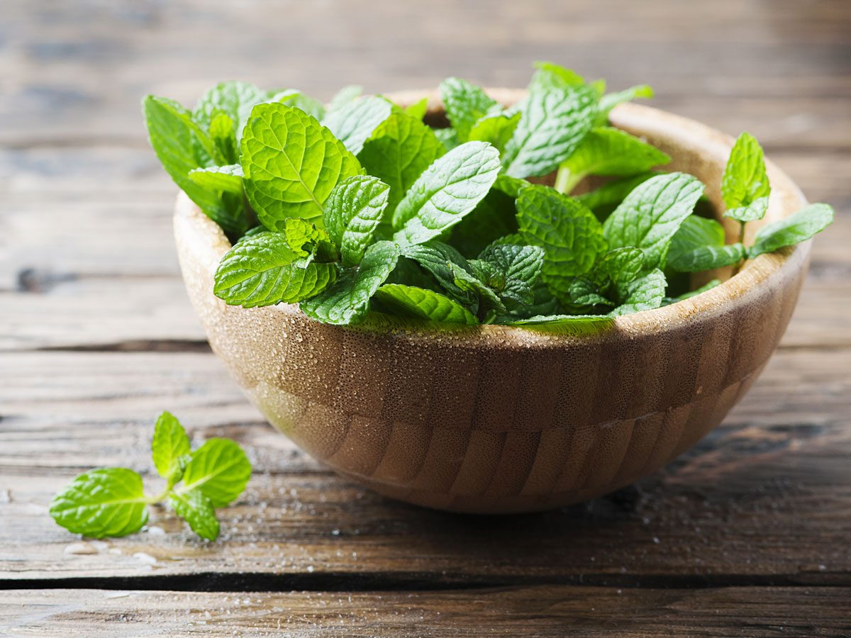 natural appetite suppressants - peppermint