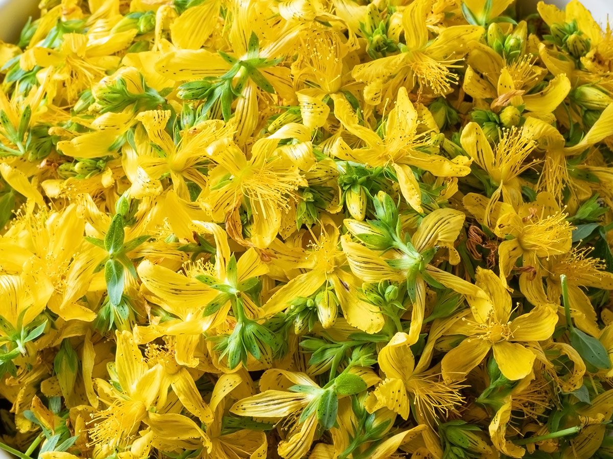 natural remedy st. john's wort for depression