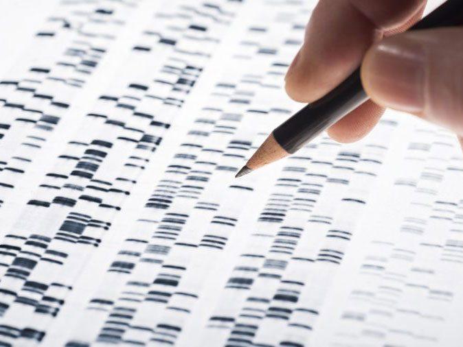 human body - DNA