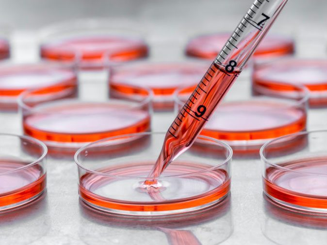 human body - test tubes