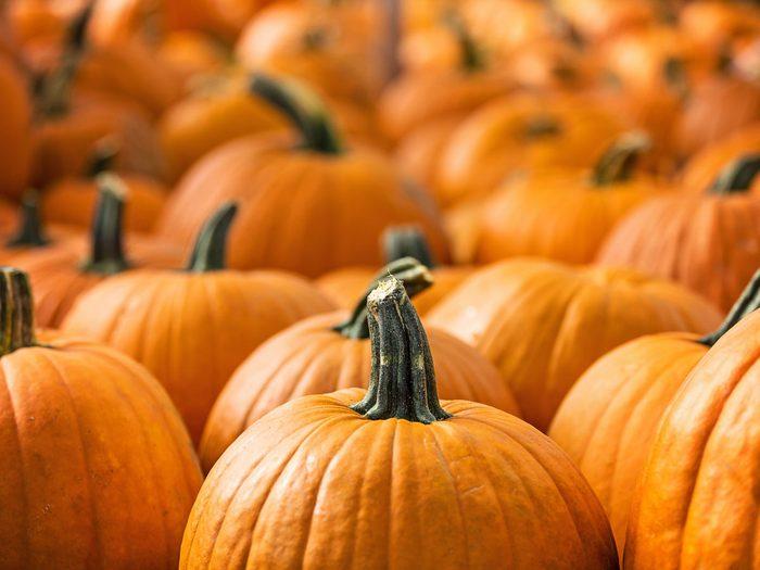 improve your eyesight - pumpkin