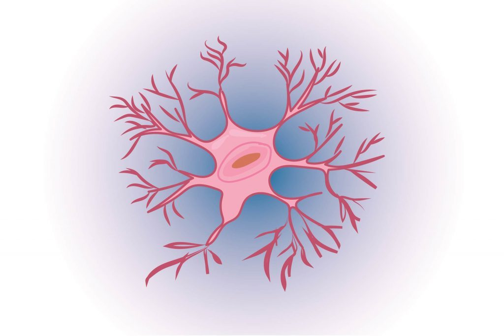 Graphic of a neuron