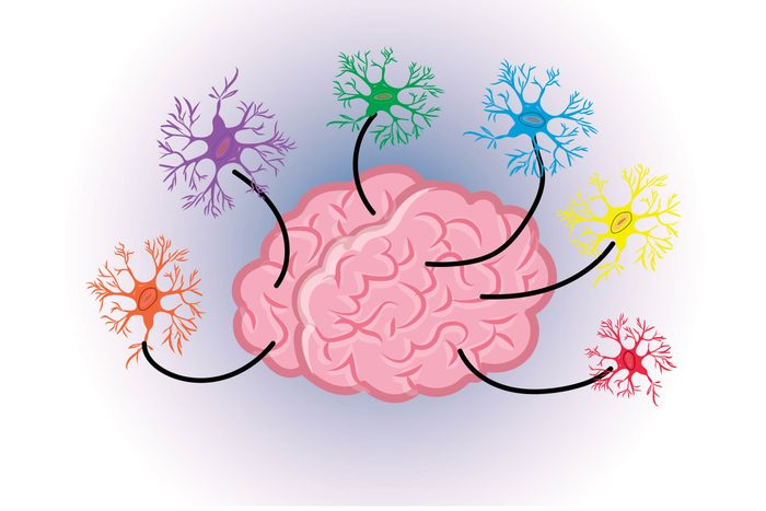 Graphic of human brain with glial cells or neurons emanating