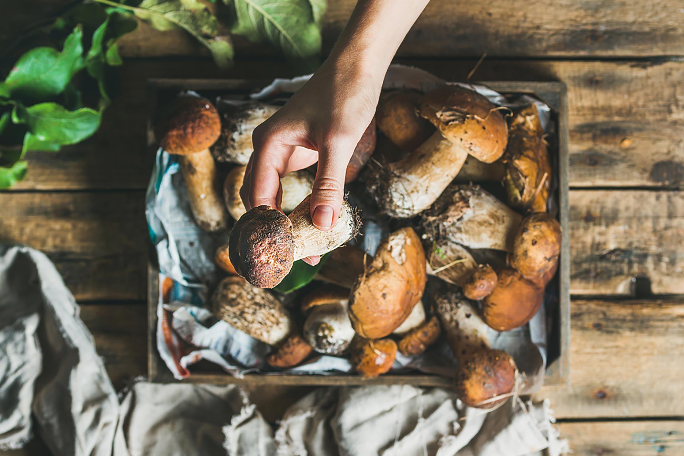 Boost your immunity naturally | Mushrooms