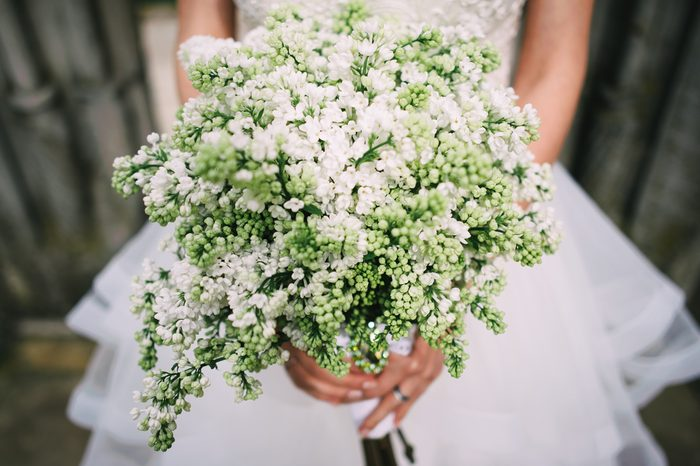Bride holding white lilac wedding bouquet; Lilac wedding bouquet