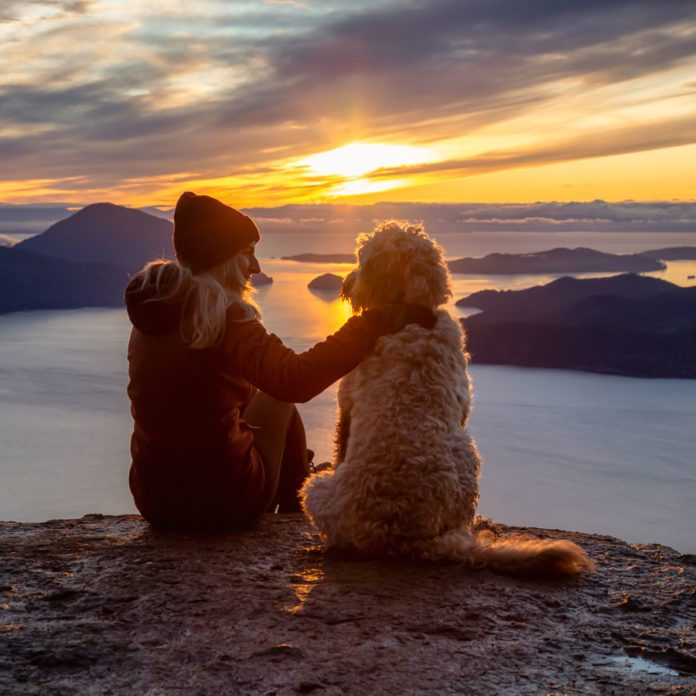 The Secret to a Healthy Heart is Having a Dog