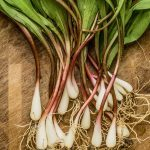 This Wild Veggie Is Nature's Answer to Fighting Allergies