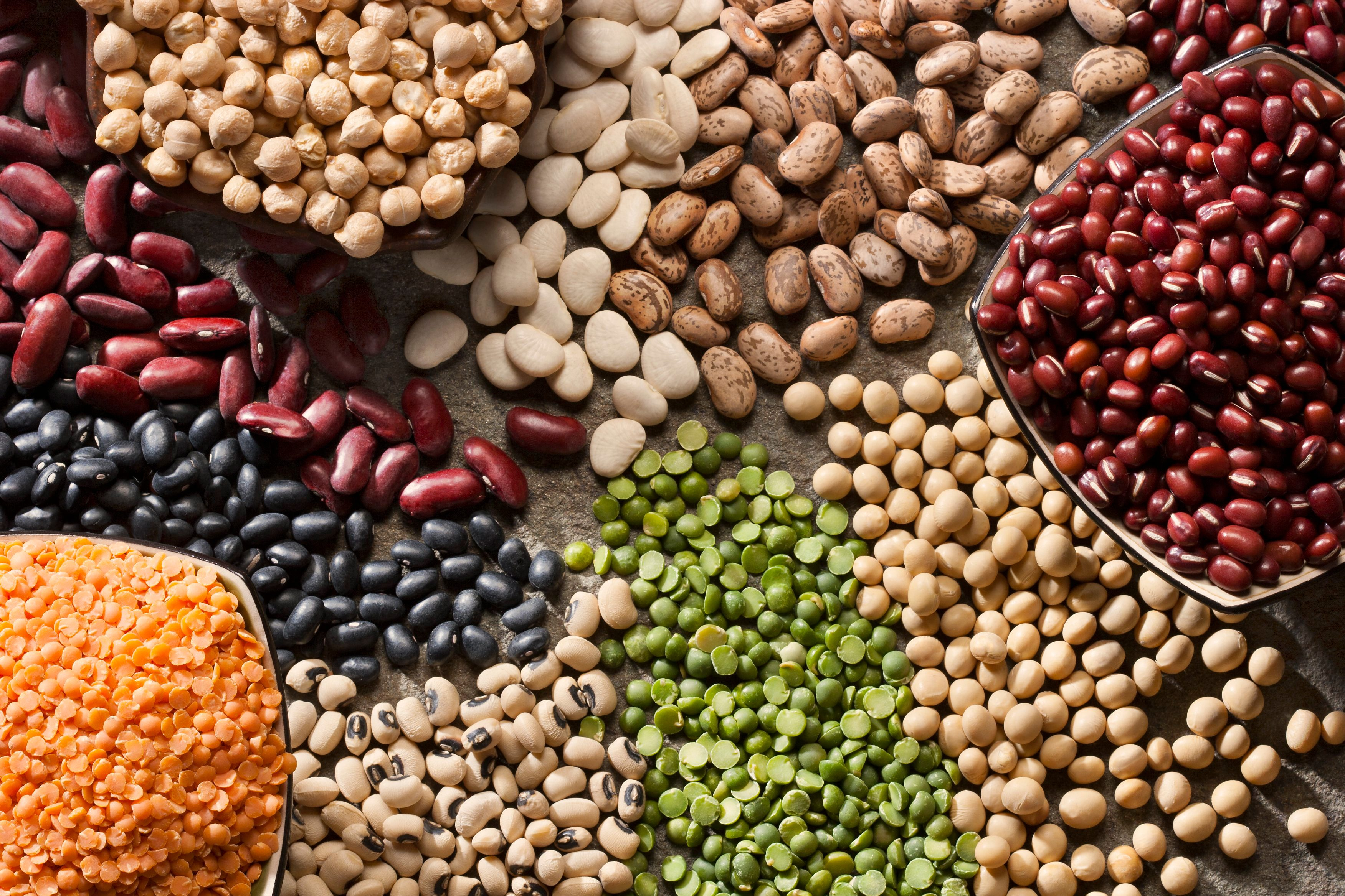 variety of legumes from above