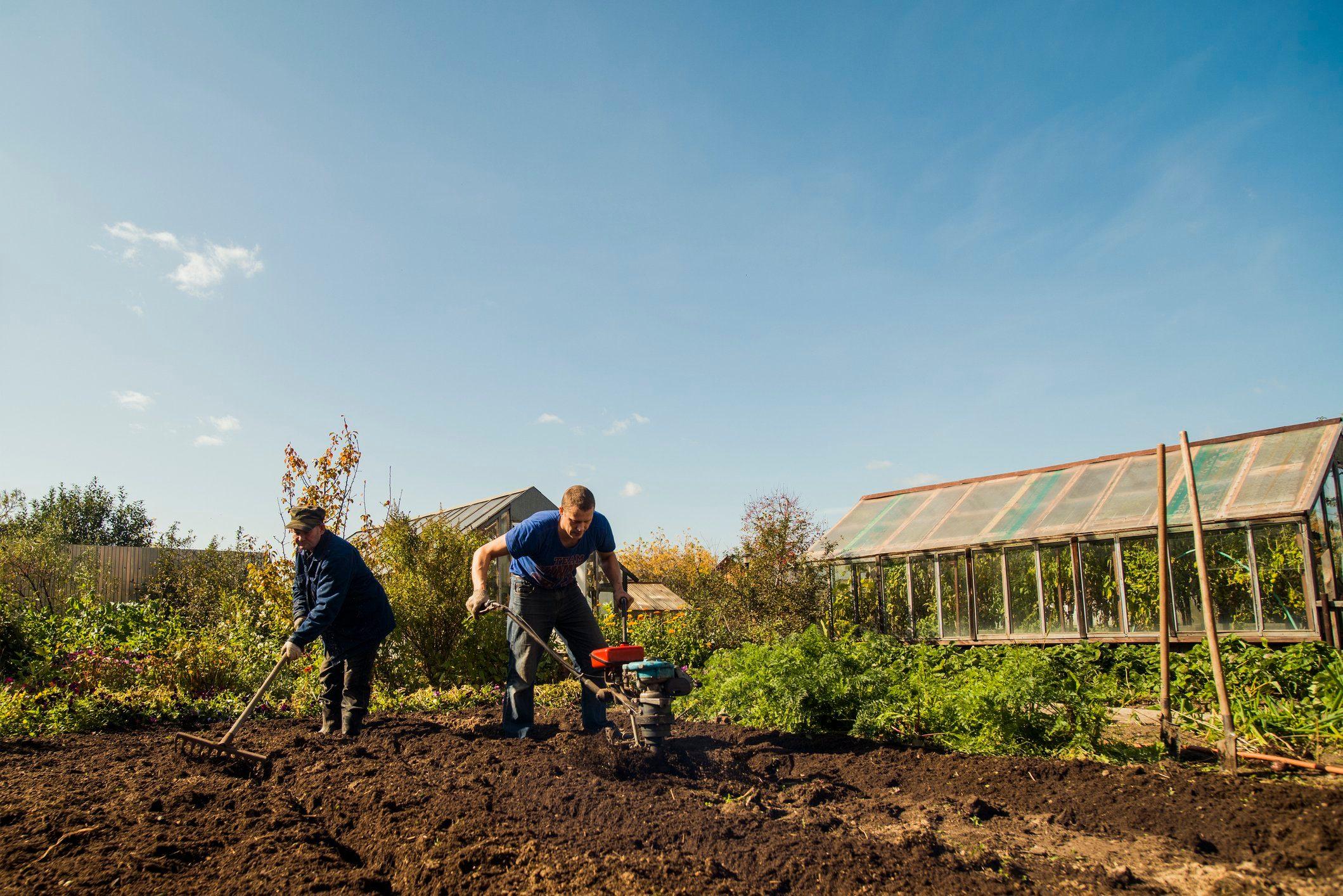 two men working in garden