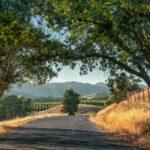 How to Do a Wellness Escape to Sonoma, California