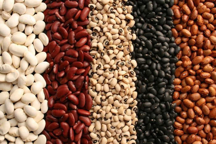 type of beans