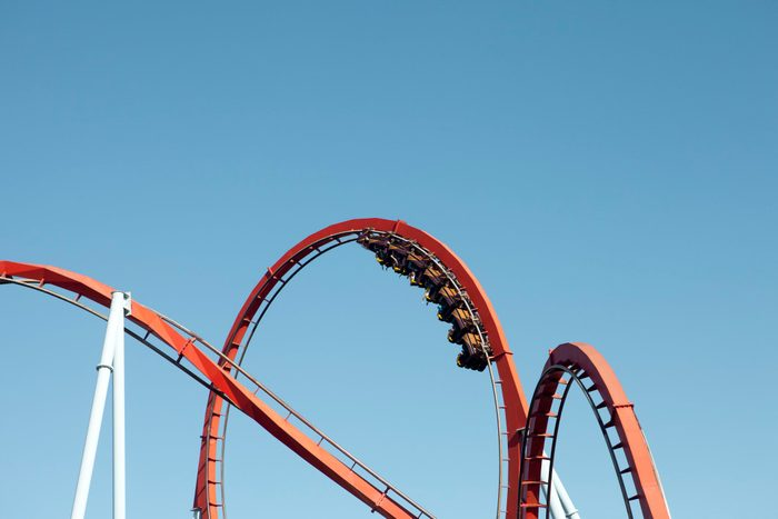 body facts | roller coaster