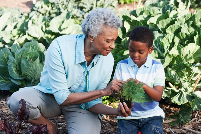 cause dehydration | grandmother and grandson gardening in backyard