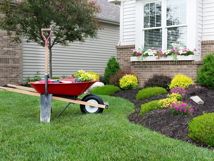 How to make walking less boring - pretty landscaping