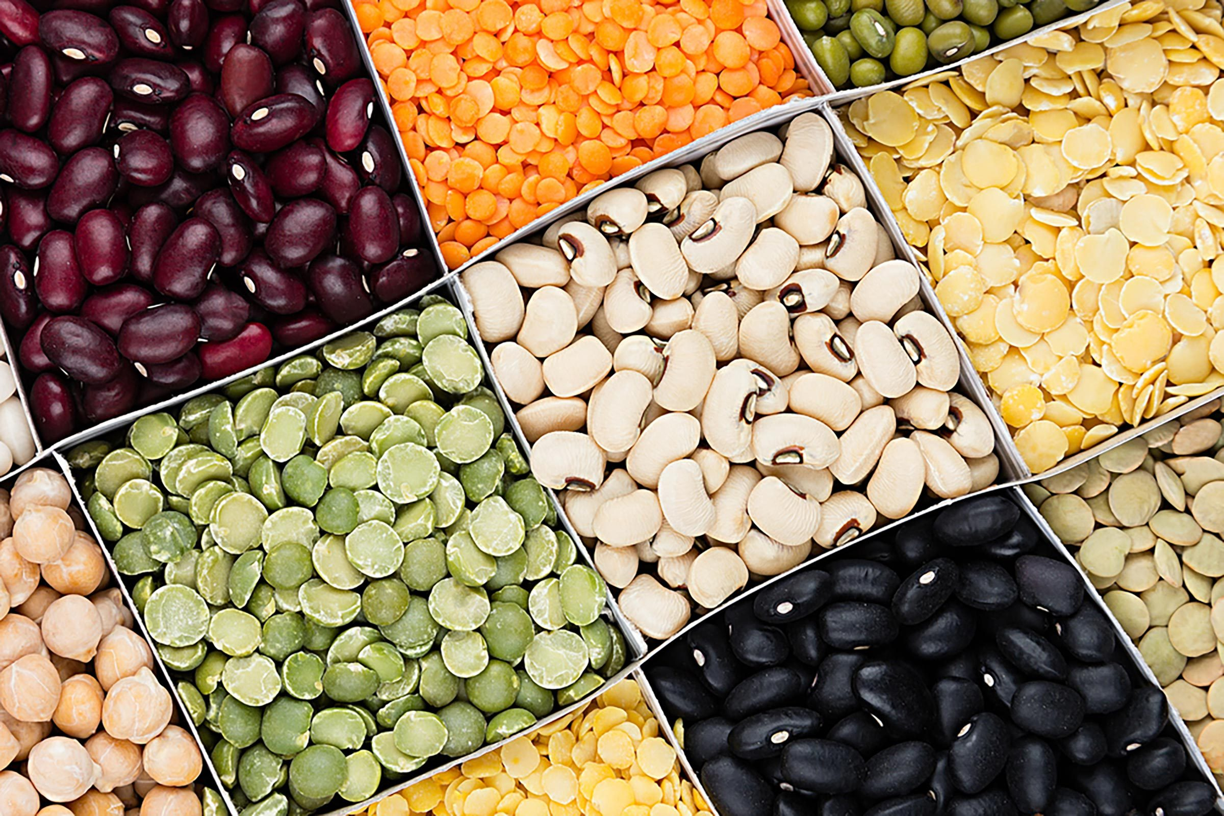 beans, peas and lentils, pulses