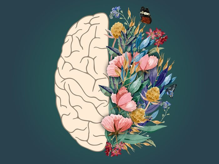 how to make good memories | brain and flowers | the mind