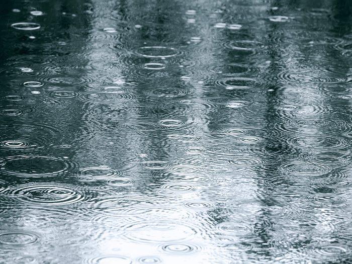 rainy day   prevent worries