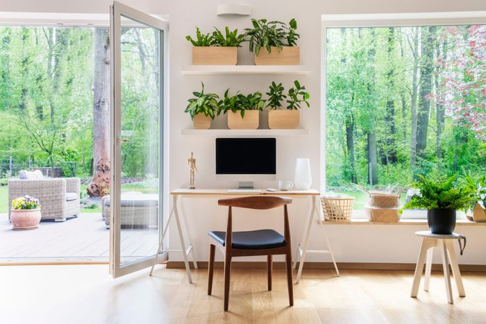 healthier home changes   home office with lots of plants and desk
