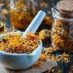 13 Highly Effective Folk Medicine Remedies From Around the World